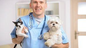 Bolnik z veterinarjem