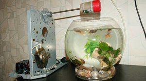 Avtomobil za akvarij. Prednosti in slabosti korit za ribe