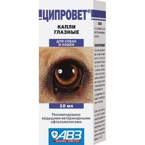 Ziprovet - učinkovite kapljice očesnih bolezni pri mačkah in psih