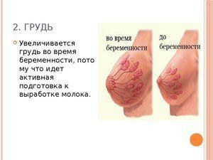Kako se prsne spremembe med nosečnostjo