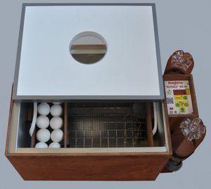Blitz inkubator proizvajalca