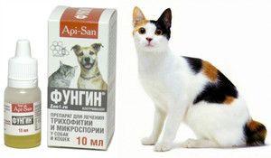 Značilnosti uporabe zdravila Fungin za mačke in pse