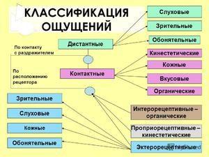Spoznanja človeka
