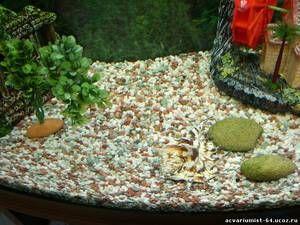 Peščena tla za akvarij