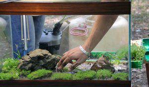 Morski pesek za akvarij