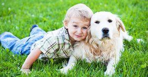 Imena živali: kakšno ime bi moral biti štirinožni prijatelj