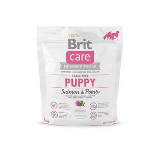 Premium hrana `Brit `za pse: značilnosti, sestava in koristi