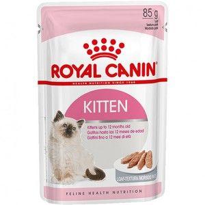 Krma za mačke in njene značilnosti