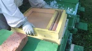 Sorte hranil za čebele