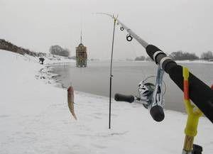 Lov na napajalniku iz ledu: izbira orodja in skrivnosti ribolova v zimskem času