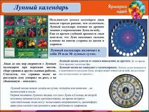 Lunarni koledar transplantacije sobnih cvetov za leto 2017