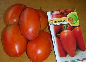 Opis in značilnosti paradižnikovega popra