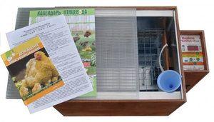 Kako izbrati med inkubatorji
