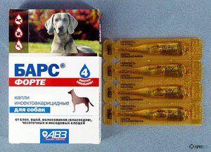 Indikacije za uporabo kapljic leoparda za pse