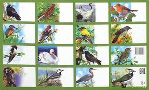 Seznam ptic na ozemlju Rusije