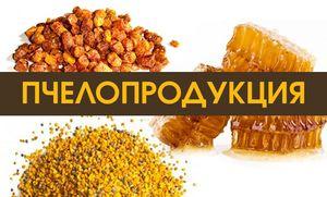 Izdelki čebel