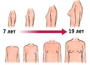 Dekleta v obdobju pubertete