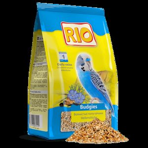 Hrana za papige