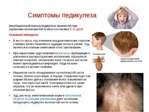 Pripravki proti uši